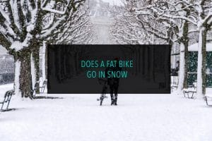 Does a Fat Bike Go in Snow