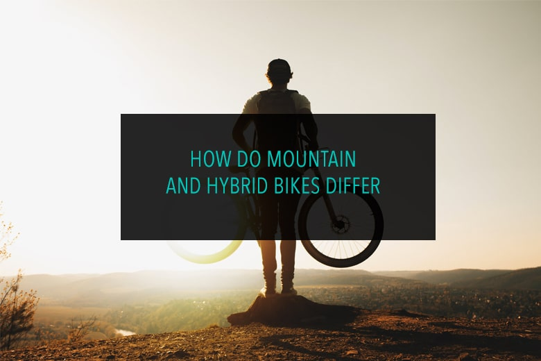 How do Mountain and Hybrid Bikes Differ