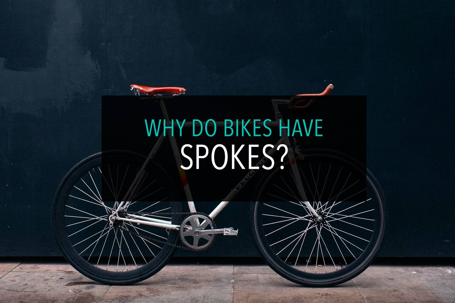 Why Do Bikes Have Spokes