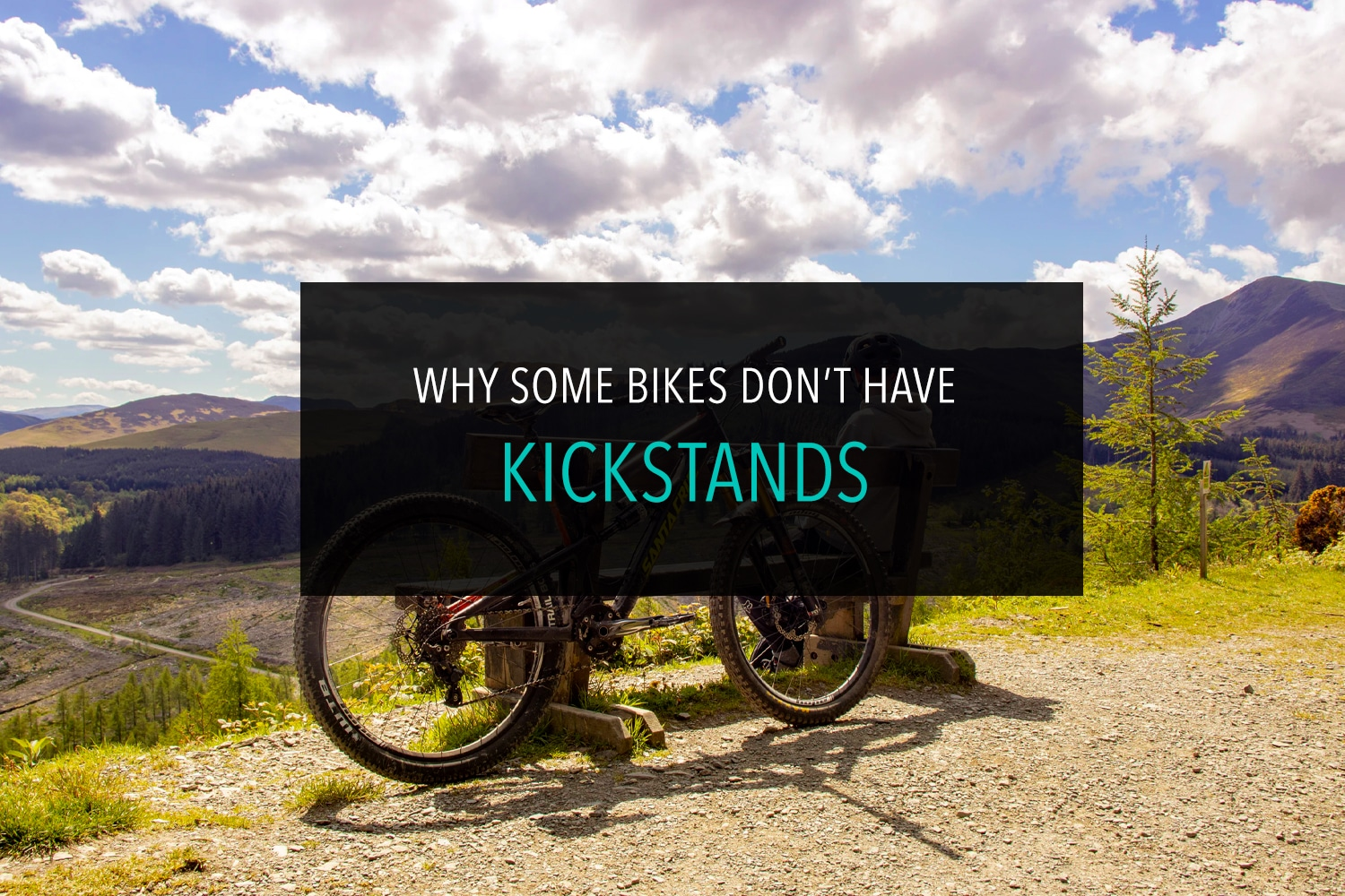 Why some bikes dont have kickstands