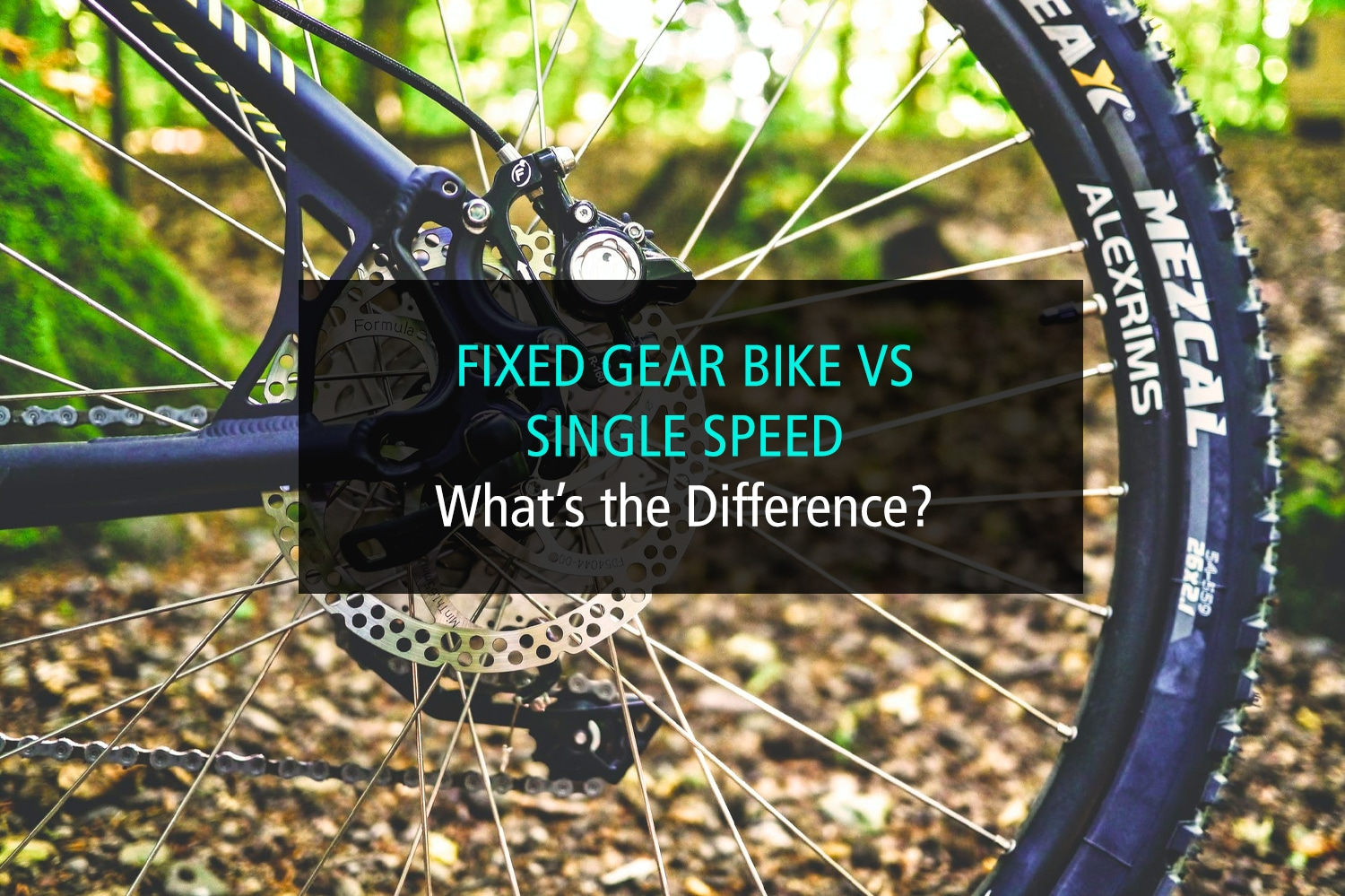 Fixed Gear Bike vs Single Speed