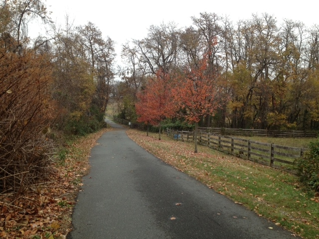 BWI Trail - Views and Reviews from our Bikes