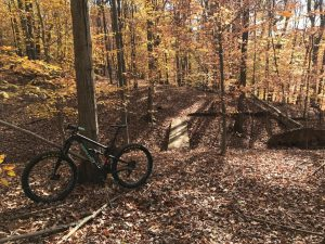 Mountwood Park Trail System-Singletracks