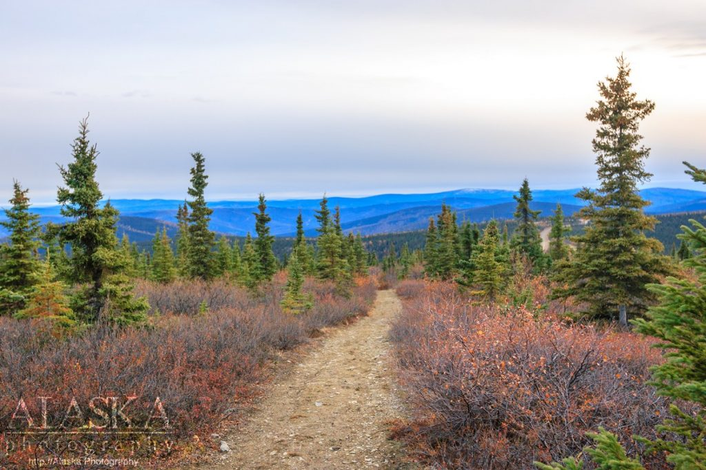 The Dome Trail