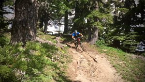 Timberline to Rhododendron - Singletracks