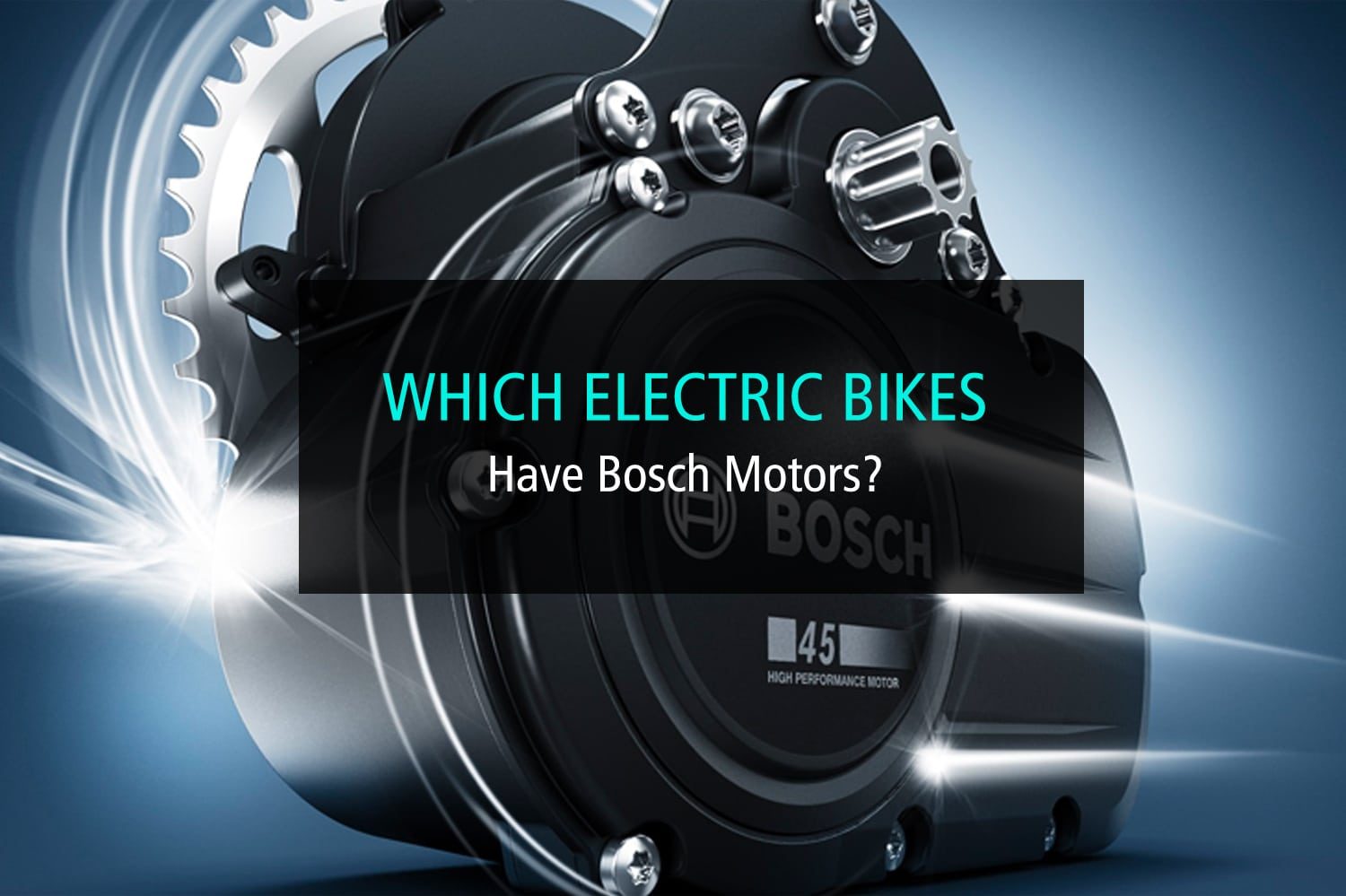 Which Electric Bikes Have Bosch Motors - WP